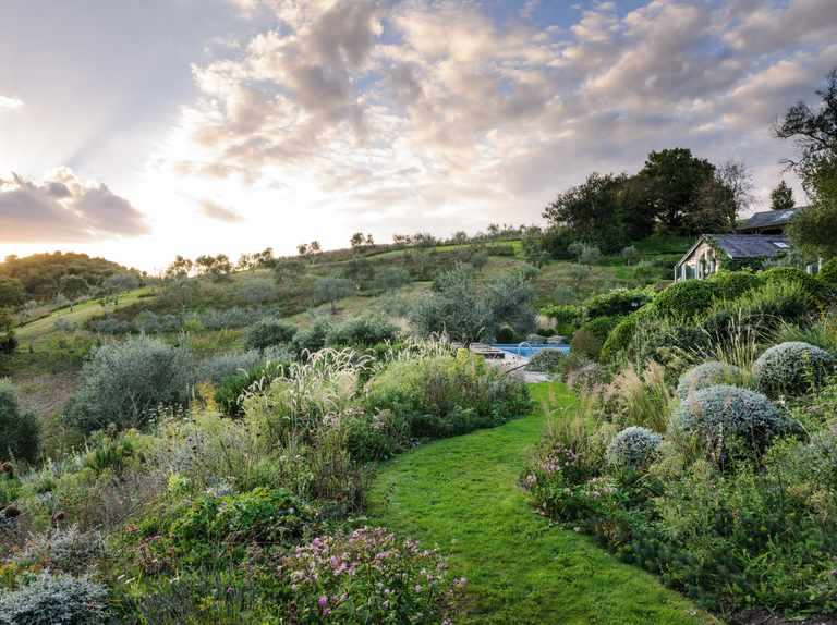 A Mediterranean-inspired garden for a changing climate
