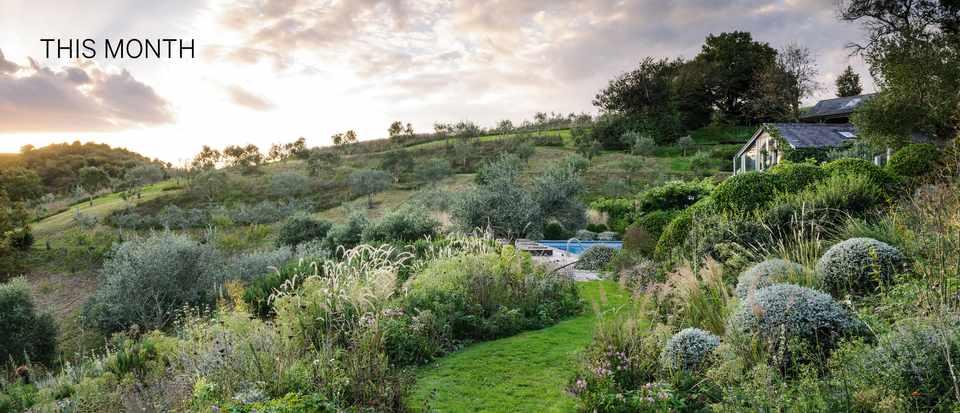 Conrad Batten's Mediterranean-inspired garden
