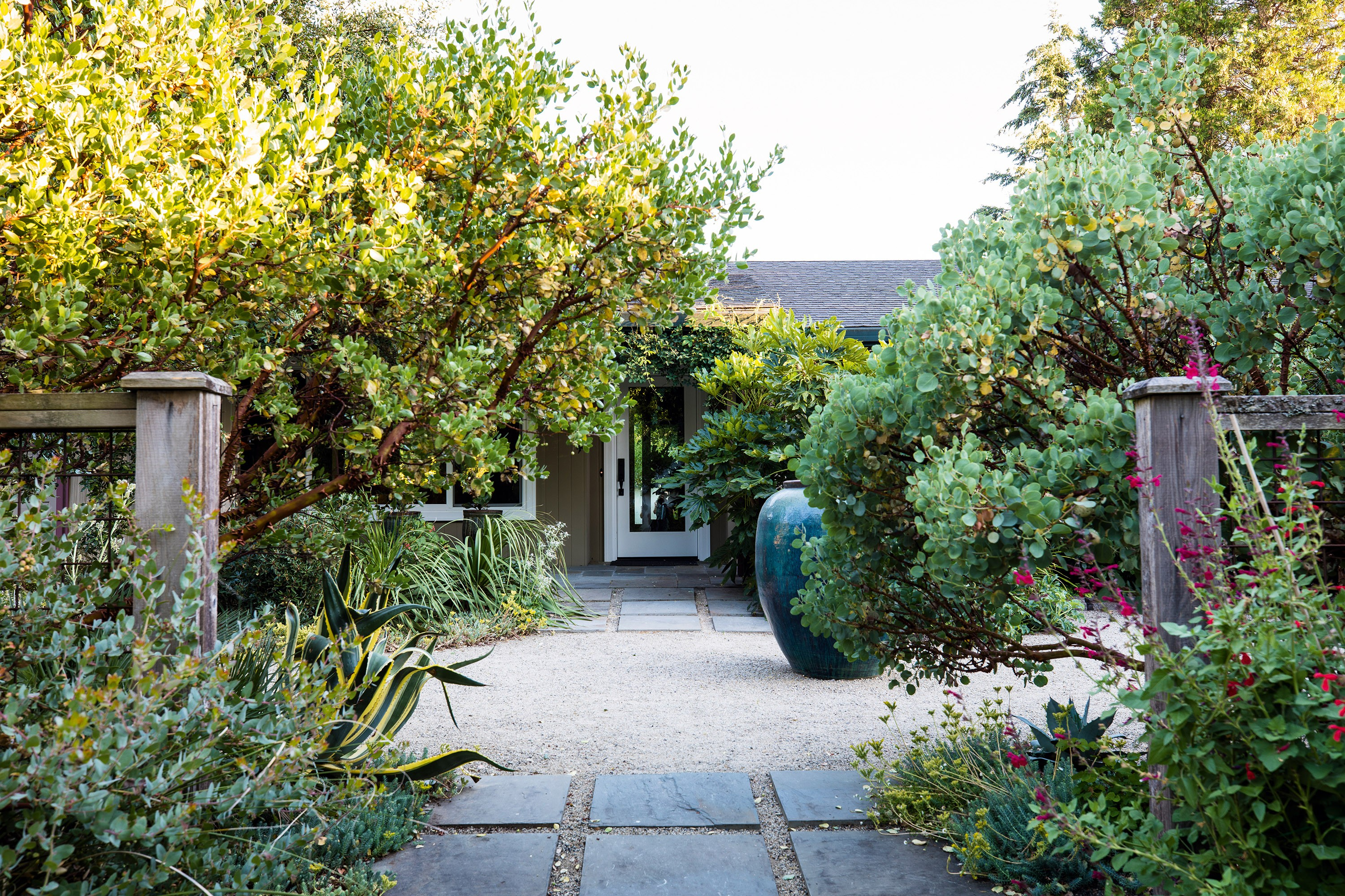 Sean Hogan's West Coast garden