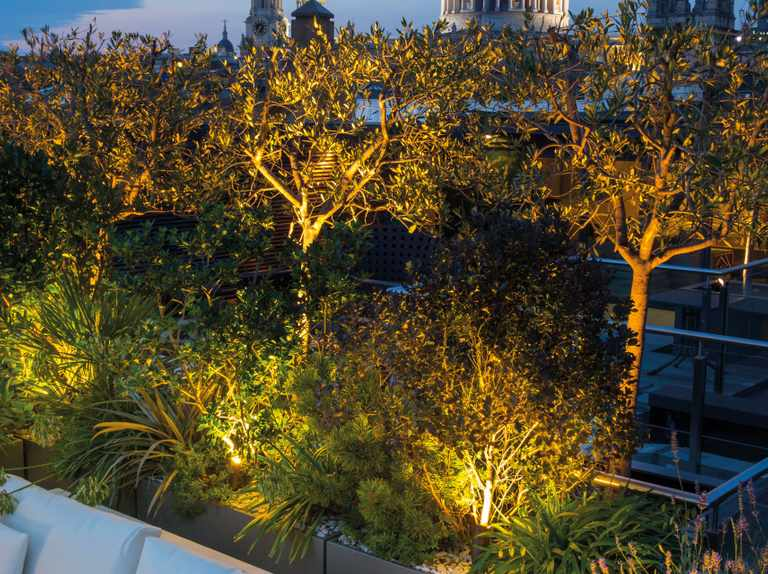 Night lights for the garden and how they can transform your outside space