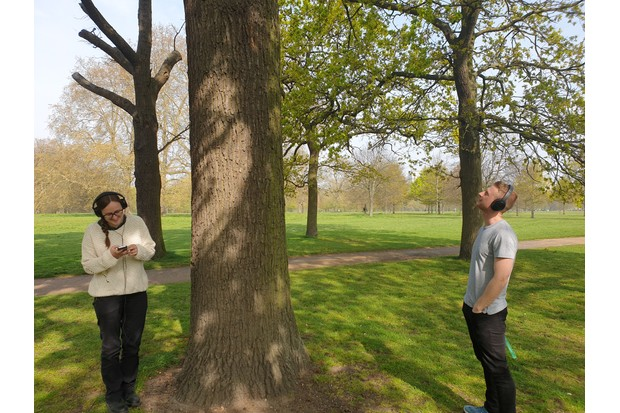 People using the Music for Trees app in Regent's Park