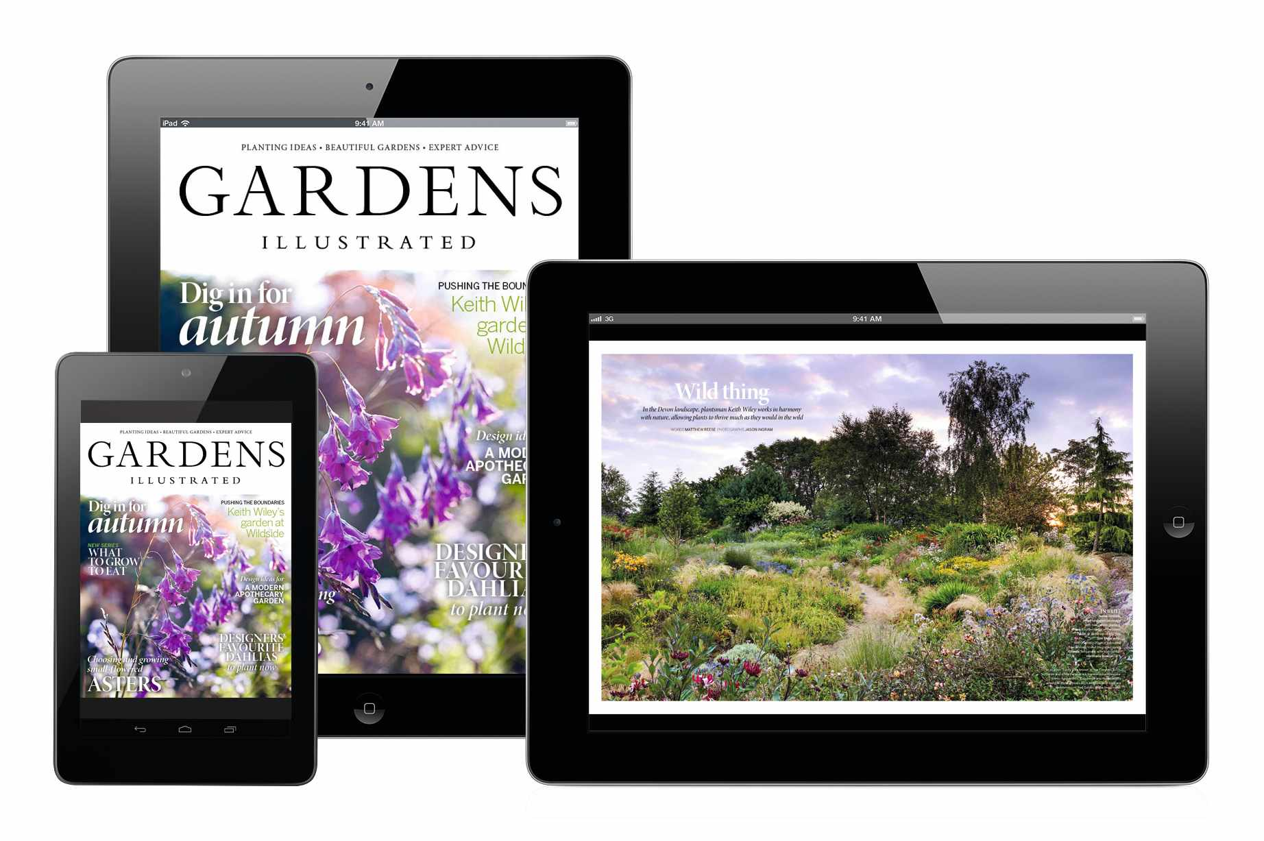 October's Gardens Illustrated