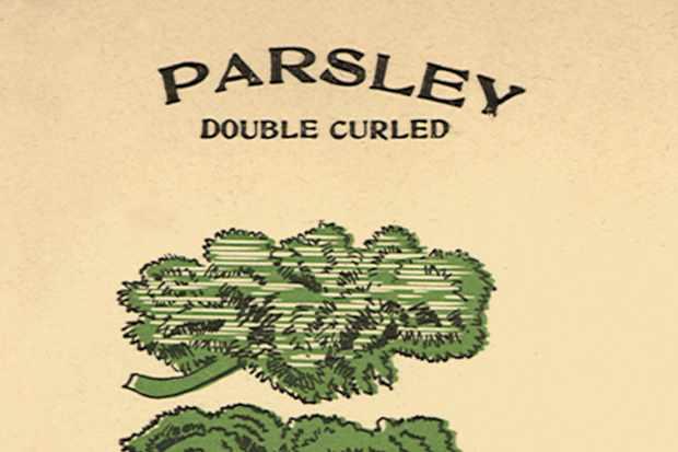 Parsley seed packet