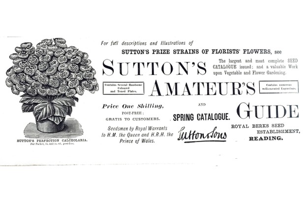 An advertisement for Sutton's Seeds. Dated 19th century