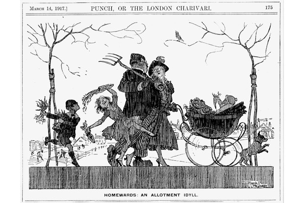 A family returning from their allotment with the vegetables they have grown. From Punch, London, 14 March 1917