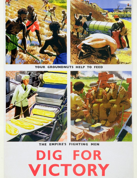 Dig For Victory' Propaganda Poster For Britain's African Colonies circa 1940