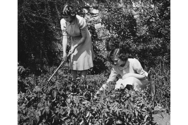 Princesses Elizabeth and Margaret working on their allotment in the grounds of Windsor Castle