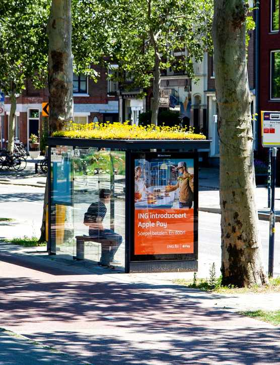 Bee-friendly bus stops in Utrect