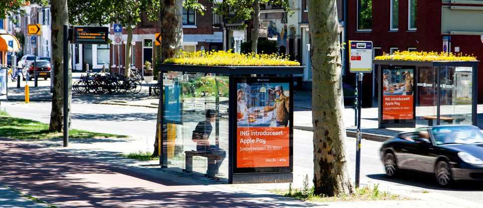 Bee-friendly bus stops in Utrect