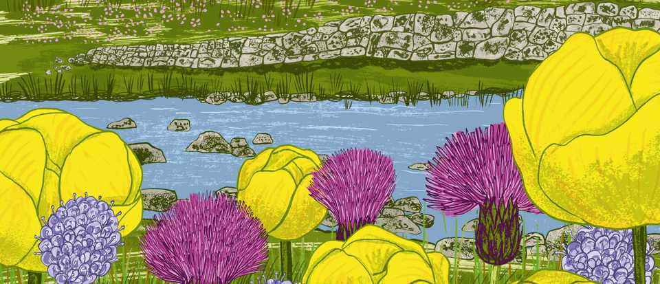 An illustration of Upper Teesdale