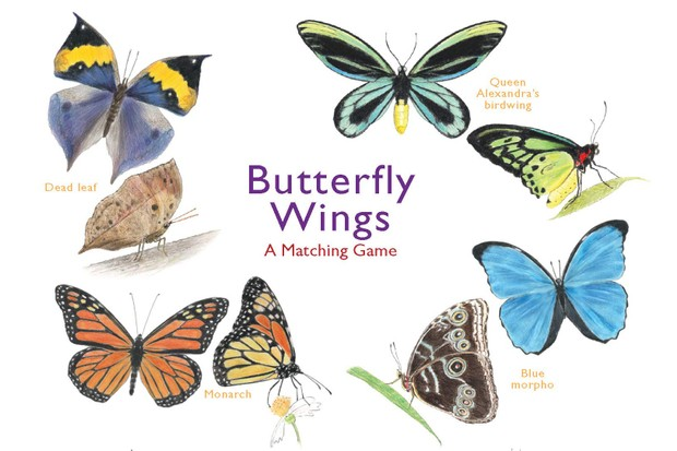 Butterfly Wings game
