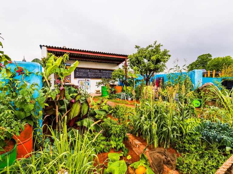 Eden Project installs CAMFED Chelsea gold-winning garden
