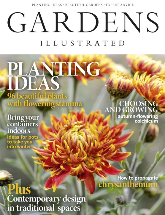 November 2019 Gardens Illustrated Cover
