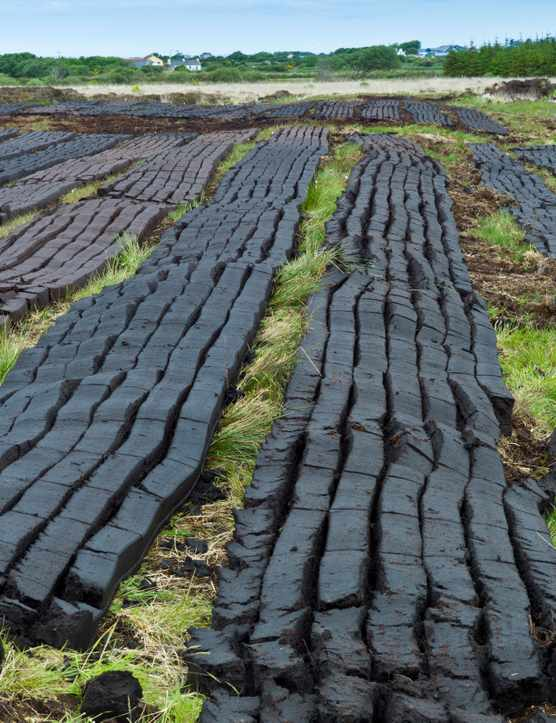 Peat laid out to dry in Ireland