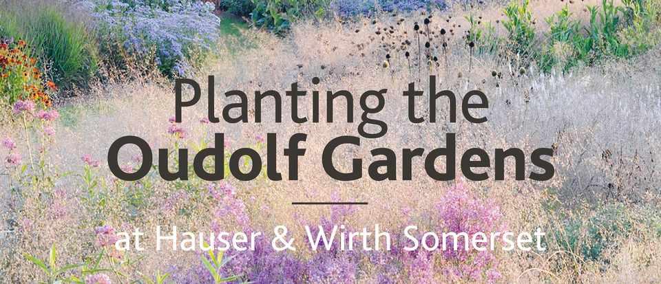 Planting the Oudolf Gardens, book
