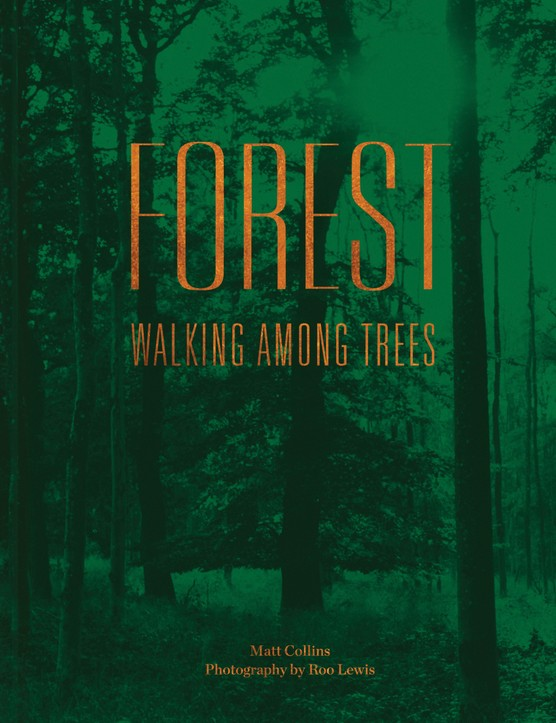 Forest_Cover.jpg