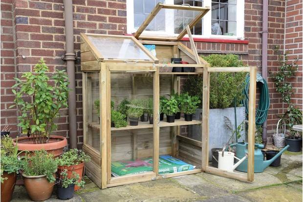 Forest garden mini greenhouse