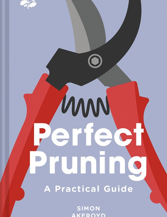 Perfect_Pruning