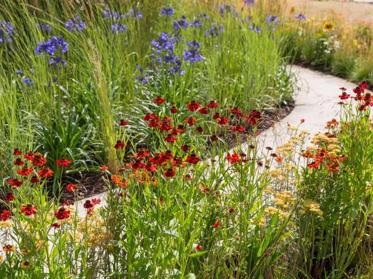 Chelsea Flower Show 2020 Tom Massey's past gardens