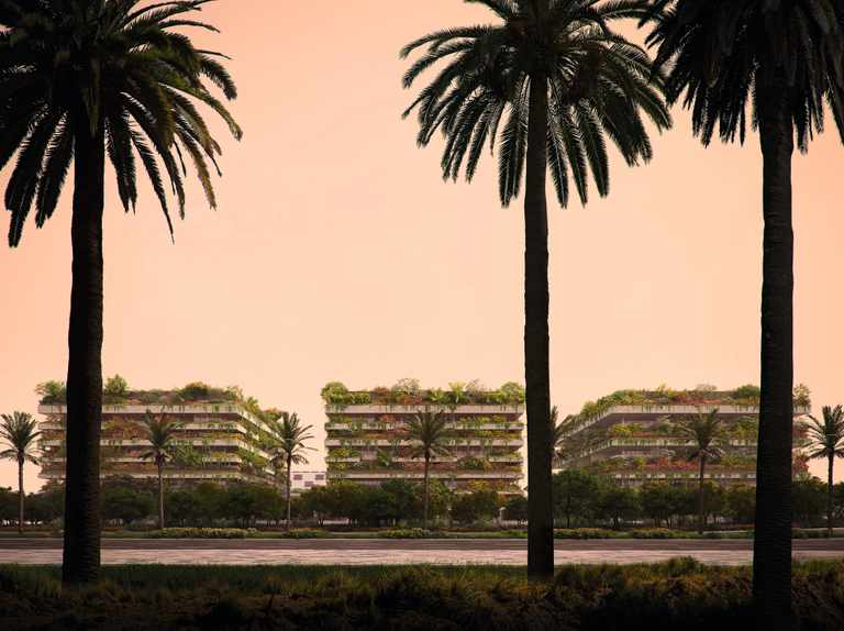 Vertical forests created for buildings in Cairo