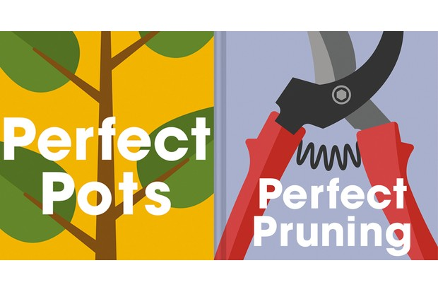 Perfect pots and pruning