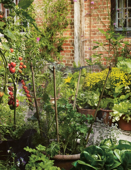 Small Gardens Gardens Illustrated