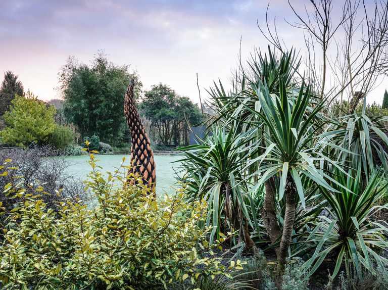 Gardens to visit in December