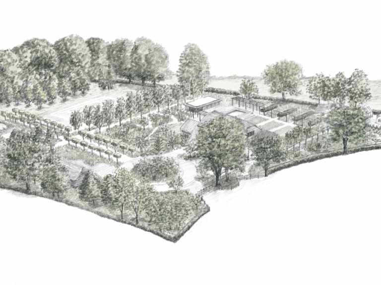 Grow a sustainable garden