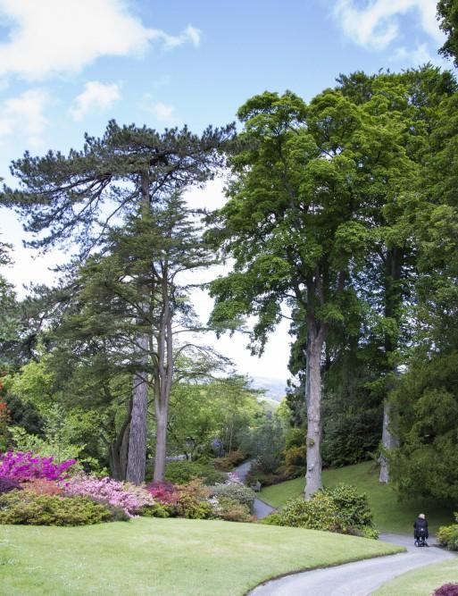 Bodnant Garden, Conwy, Wales