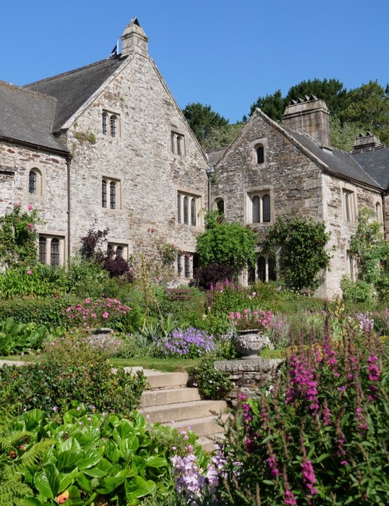The garden in July at Cotehele, Cornwall