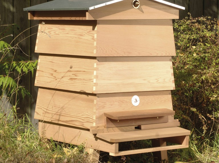 Best bee hives to buy for your garden