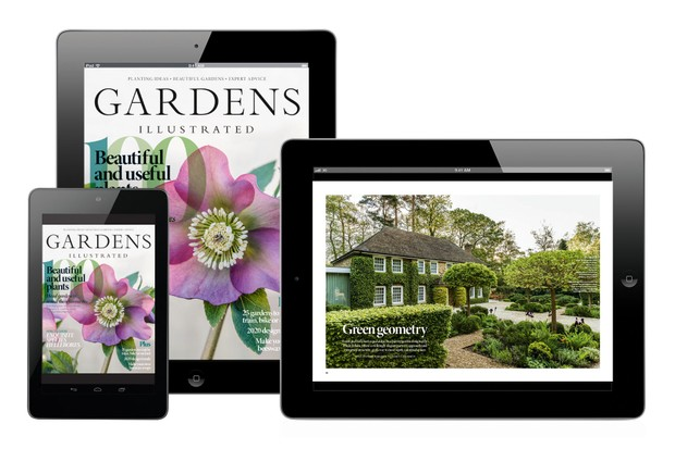 Gardens Illustrated January edition