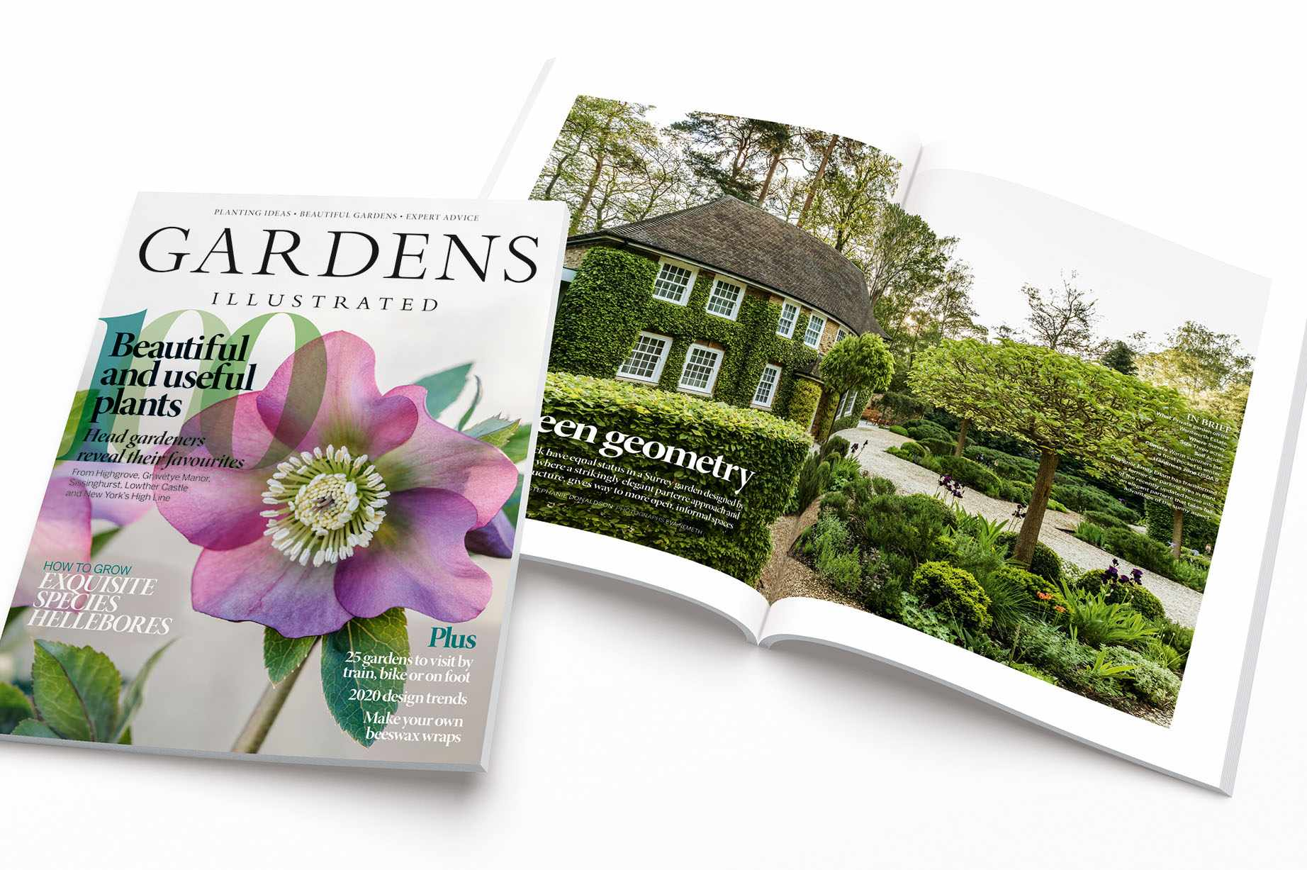 Gardens Illustrated January 2020 edition