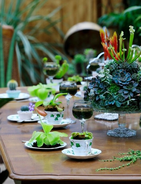 A dining table is set with a succulent feast