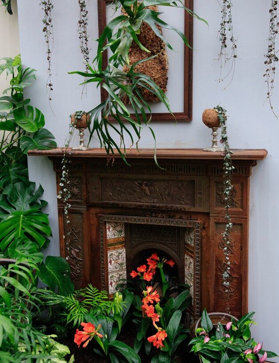A fireplace is filled with house plants