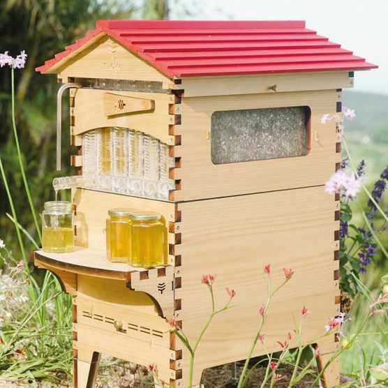 Bee Hive from Flow Hire