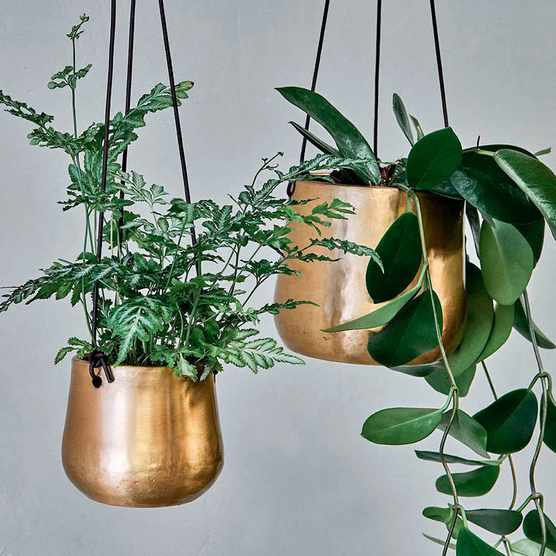 Indoor plant pot