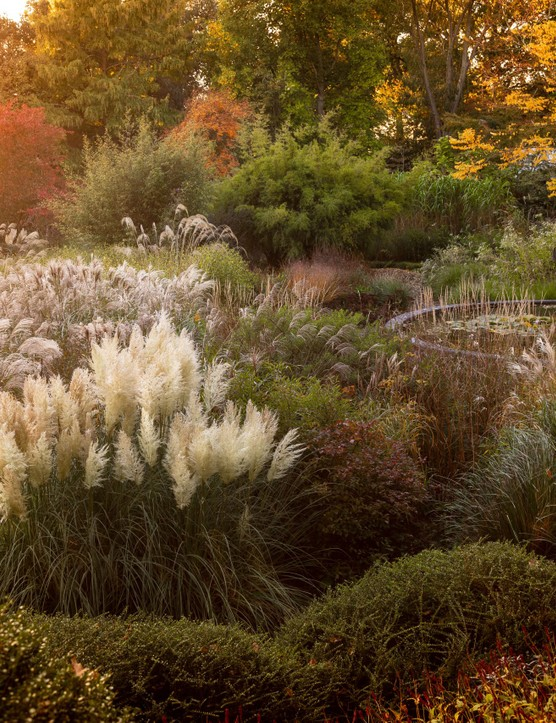 John Campbell, a finalist for Beautiful Gardens category for International Garden Photographer