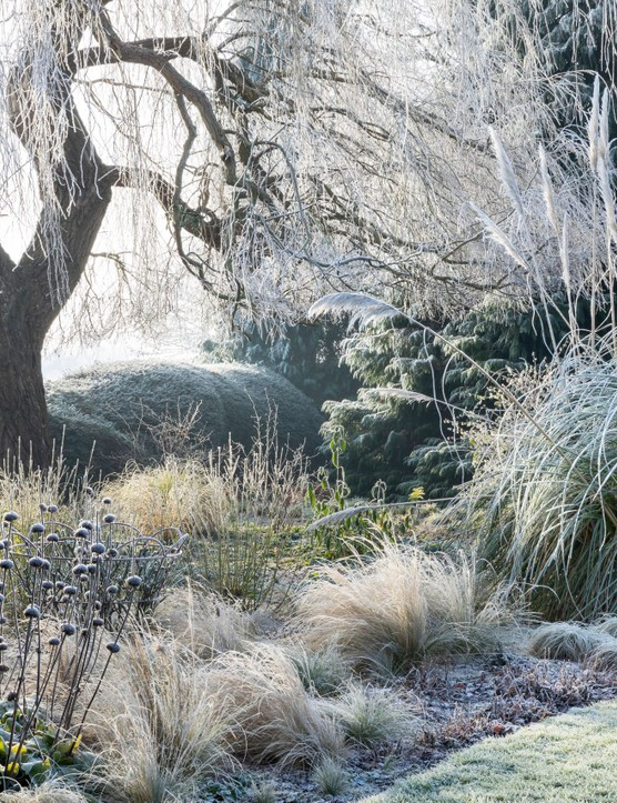 Marianne Majerus a finalist for the Beautiful Gardens category of the International Garden Photographer
