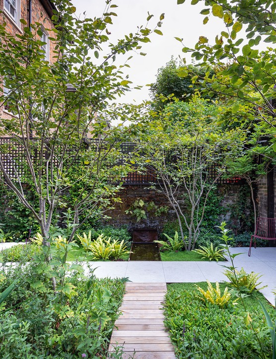 Adolfo Harrison's London small garden