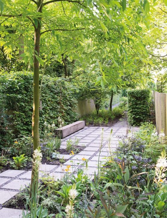 Tom de Witte's garden