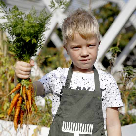 Growing carrots with the kids