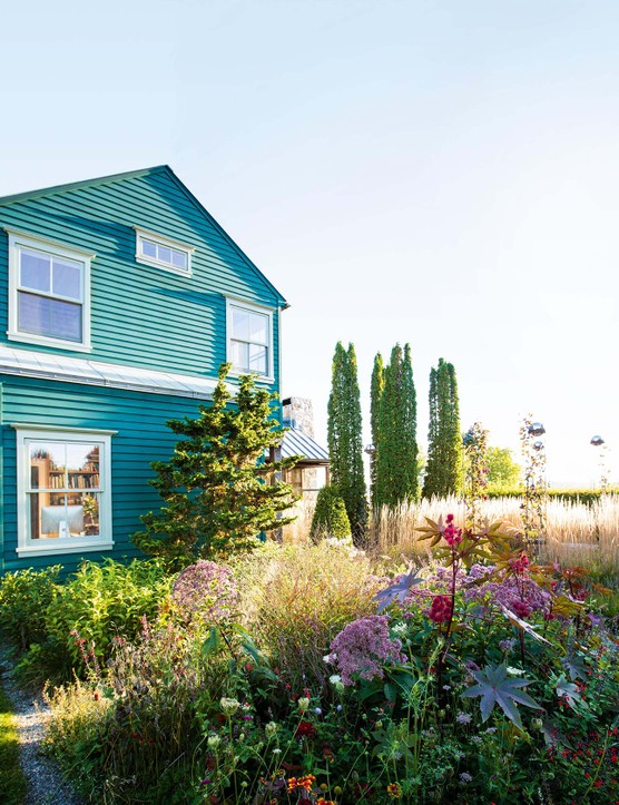 The Cornfield: An energy efficient home of Larry Went