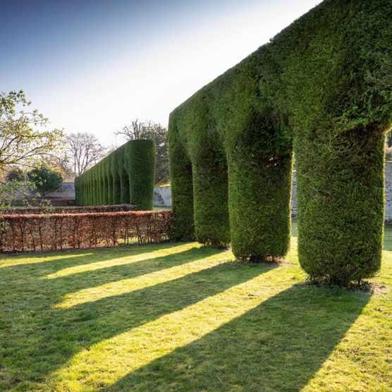 Chippenham Park in Cambridge