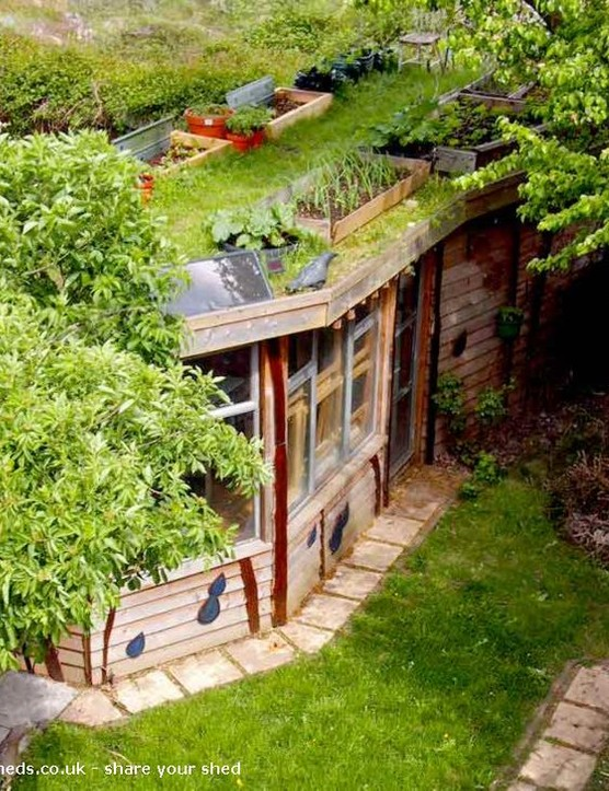 Shed of the Year 2014, Allotment Rooftop