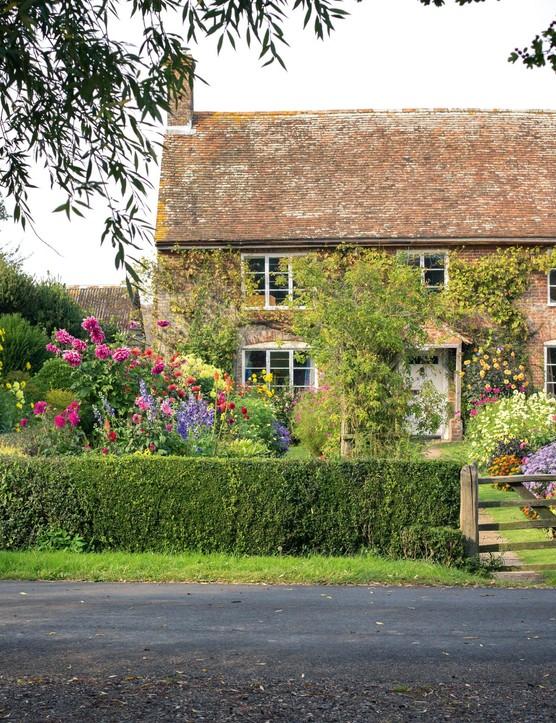 Deryck Boyd's cottage garden