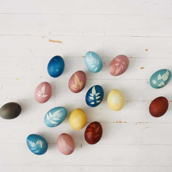Make botanical patterns on eggs for Easter