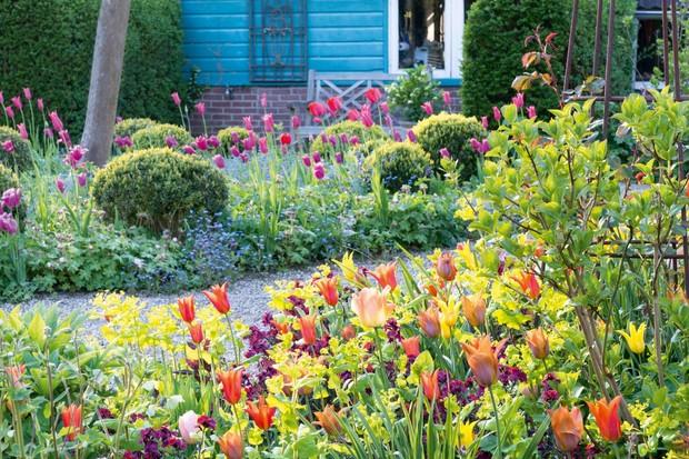 Jacqueline van der Kloet's garden near Amsterdam