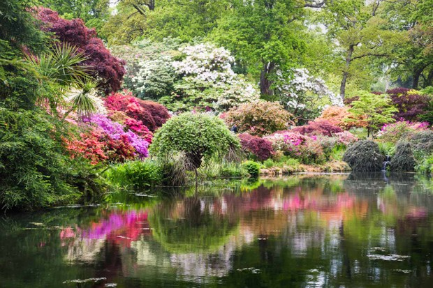 Middle Pond at Exbury Gardens