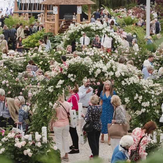 View of the Great Pavilion filled with visitors at RHS Chelsea Flower Show 2019.